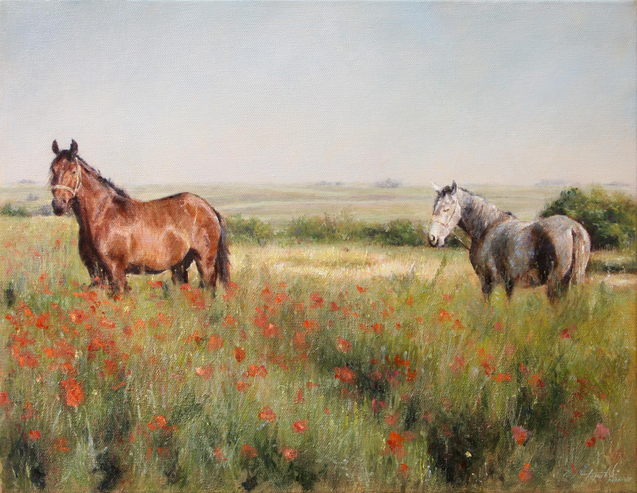 Konji u polju makova - 35x45cm, Ulje na Platnu