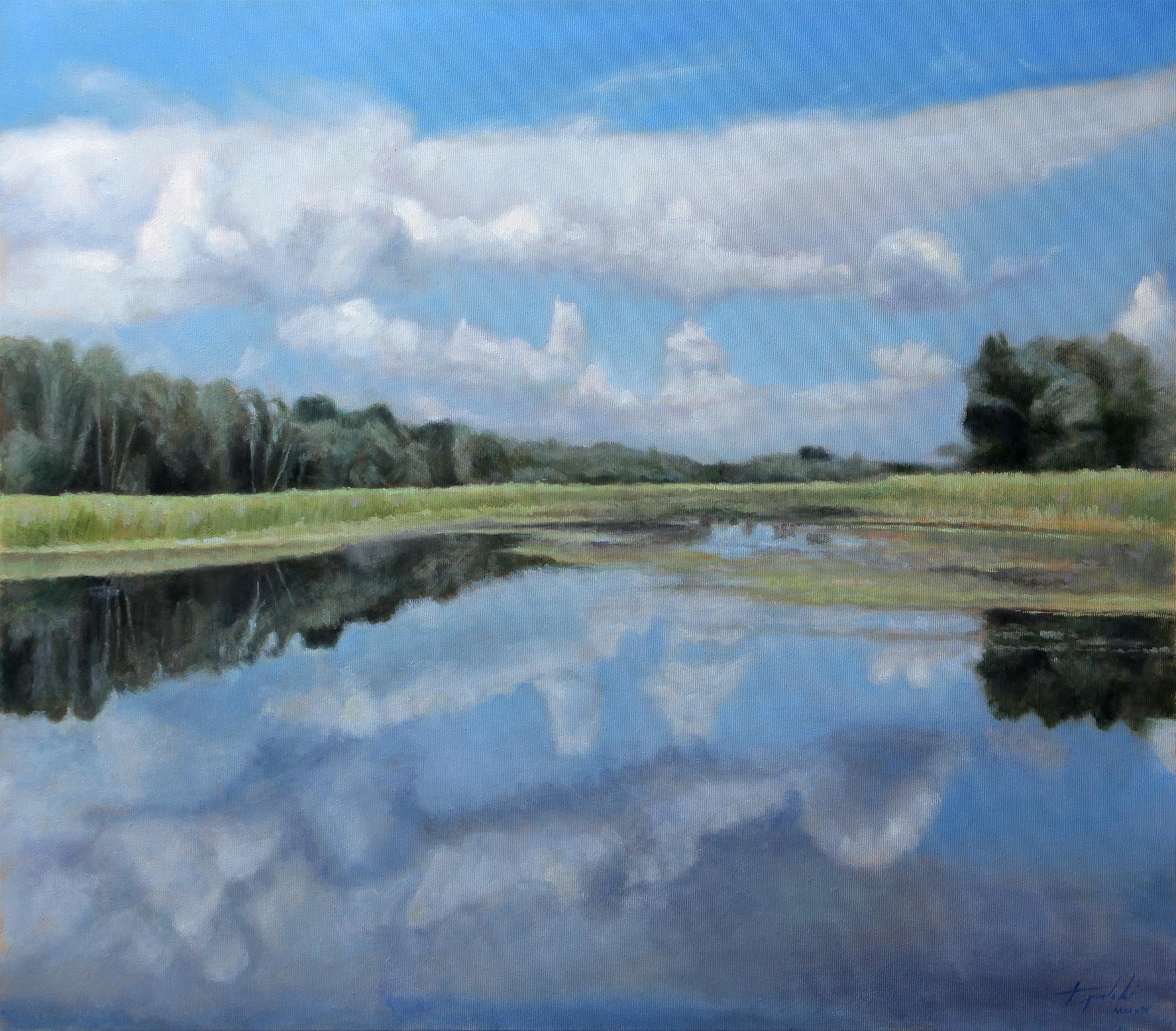 Umetnička slika - Zasavica 70x80cm Ulje na platnu - umetnik Darko TOPALSKI